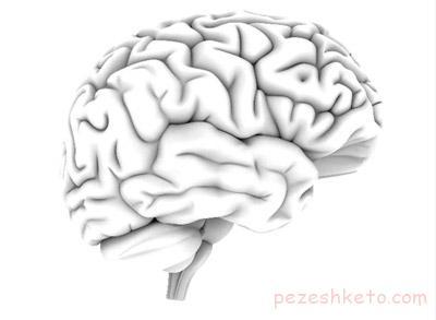 آندوسکوپی مغز