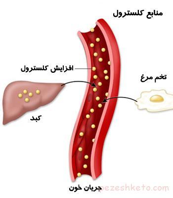 تفاوت کلسترول و تری گلیسرید چیست