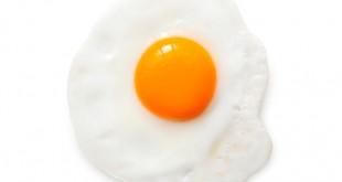 فوائد تخم مرغ برای کودک